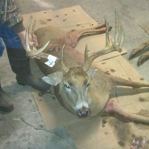 My 2011 2nd Season Shot Gun Buck